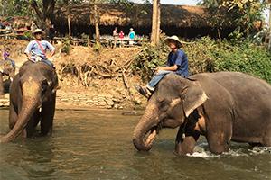 タイ放浪記:タイの文化は適度にゆるい、皆イキイキしている