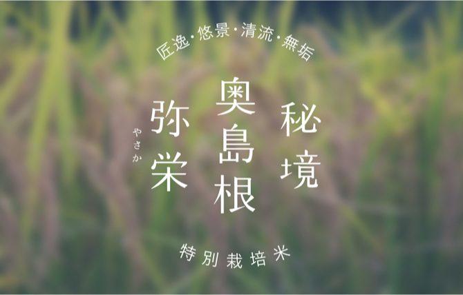 OKUSHIMANE-YASAKA